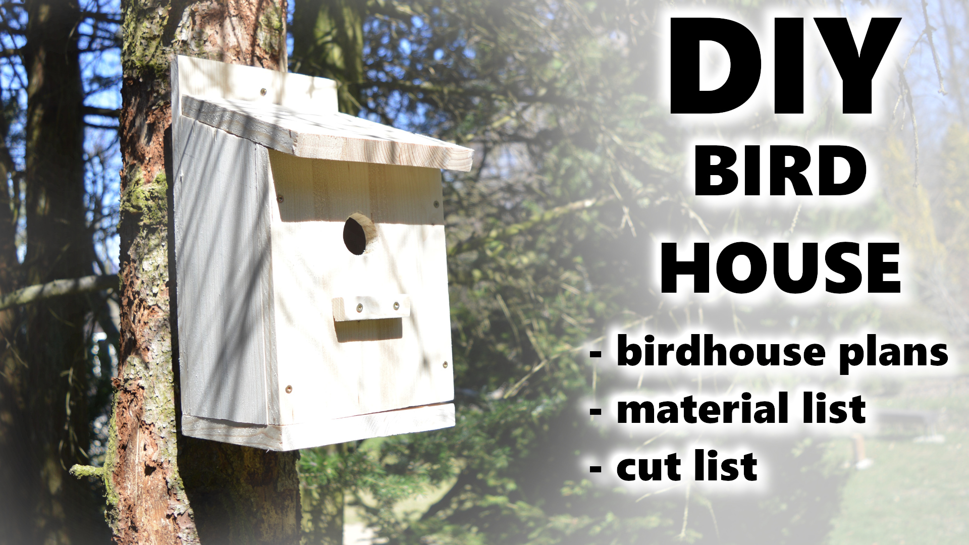 Building a Birdhouse | How to build a bird house