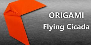 Flying cicada - ORIGAMI
